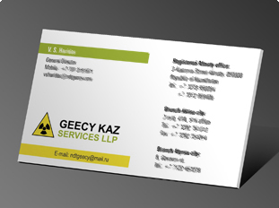 Geecy Engineering Pvt Ltd